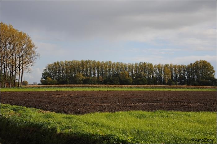 landschappuurs0002-pa-ama.jpg