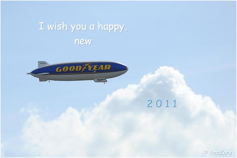 goodyear3078-amawish2011.jpg