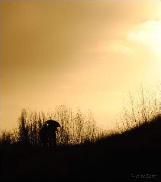deweert-silhouette0283-ama.jpg