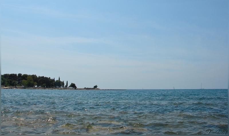 kroatie,vakantie,holiday,zon,zee,palmboom