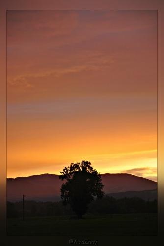 libel,natuur,landschap,Kroatie,Salzburg,zonsondergang,zee,ruimte,berglandschap,zoutwinning,