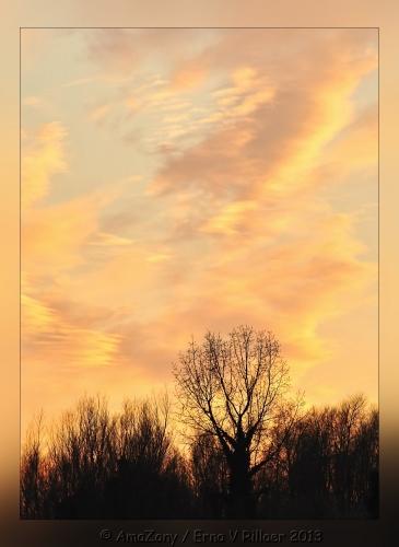 zonsondergang,kleuren,winter,maart,Puurs,drieluik
