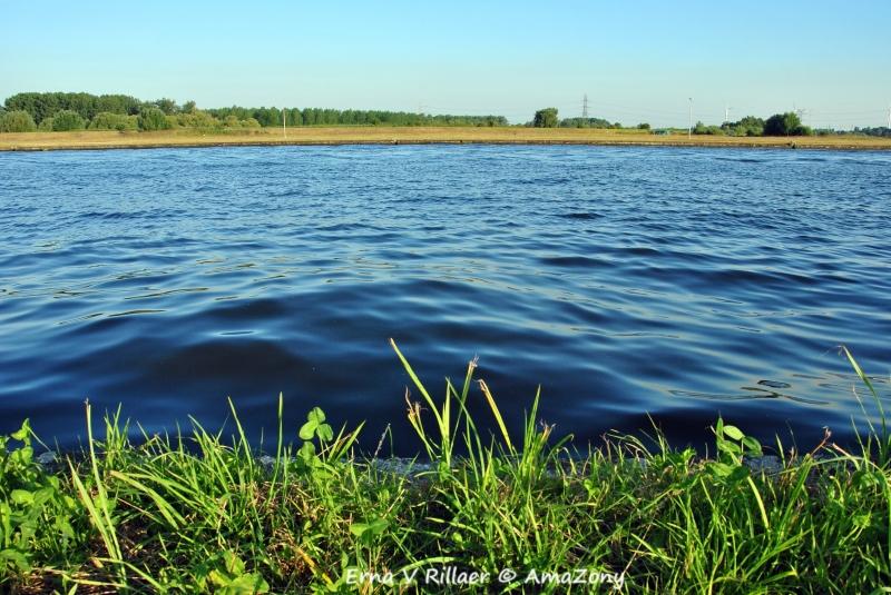 Scheldeland,Wintam,rivierenland,zomer,fotografie