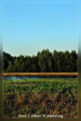 Scheldeland,Wintam,rivierenland,Schelde,zomer,De Halte,wandelen,fotografie