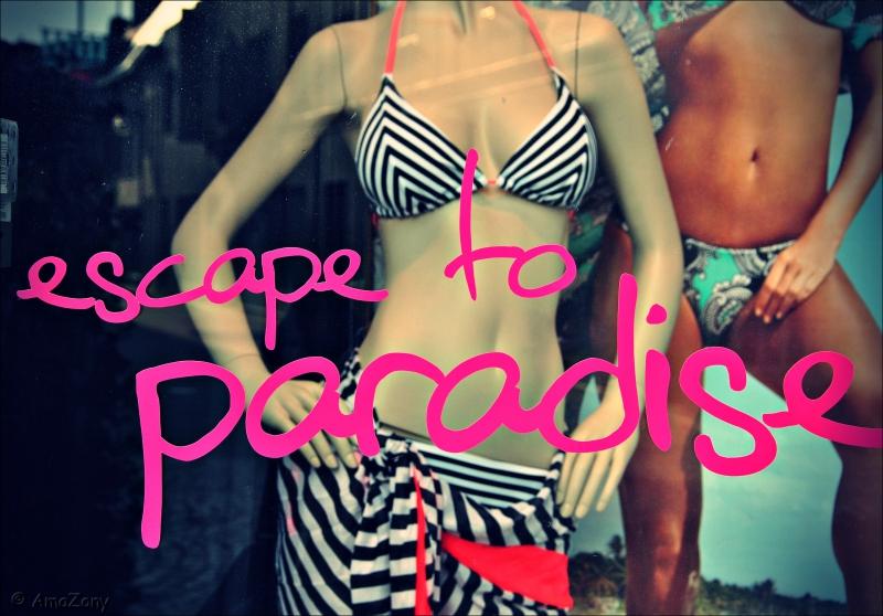 nieuwjaarswensen,warm,escape to paradise