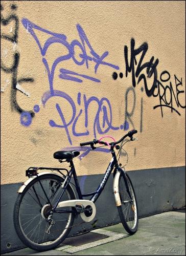 spring maar achterop,fiets,fietsen,velo,Kortrijk,fotografie