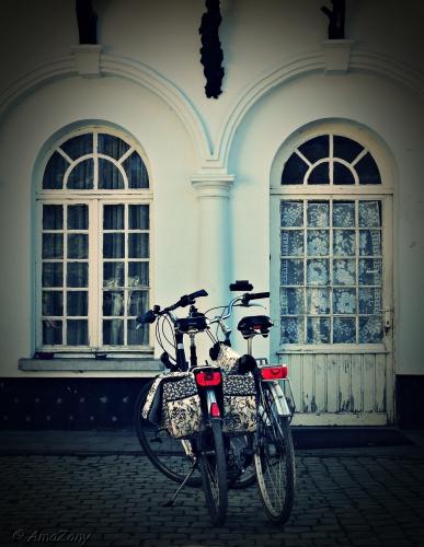 spring maar achterop,fiets,Middelheimpark,Antwerpen,fietsen,velo,Kortrijk,fotografie
