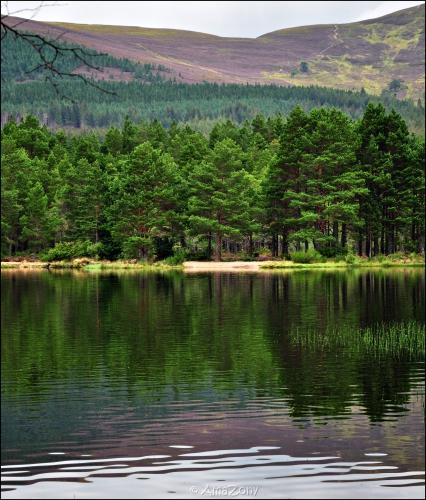 Schotland,landschappen,Edinburgh,Glencoe,Glenfinnan,Stonehaven,Cairngorms,Nationaal Park,wind,zee,lucht,bergen,The Brave