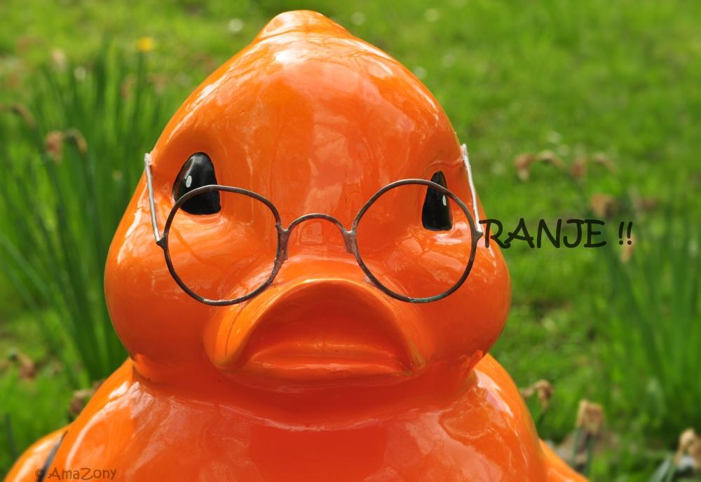 Oranje,Nederland,Opdorp,lente,Dries,eend,Rob De Nijs,Zuster Ursula,fotografie