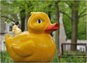 gele eend,psyduck,pokemon,hoofdpijn,fotografie,Opdorp,lente op de Dries